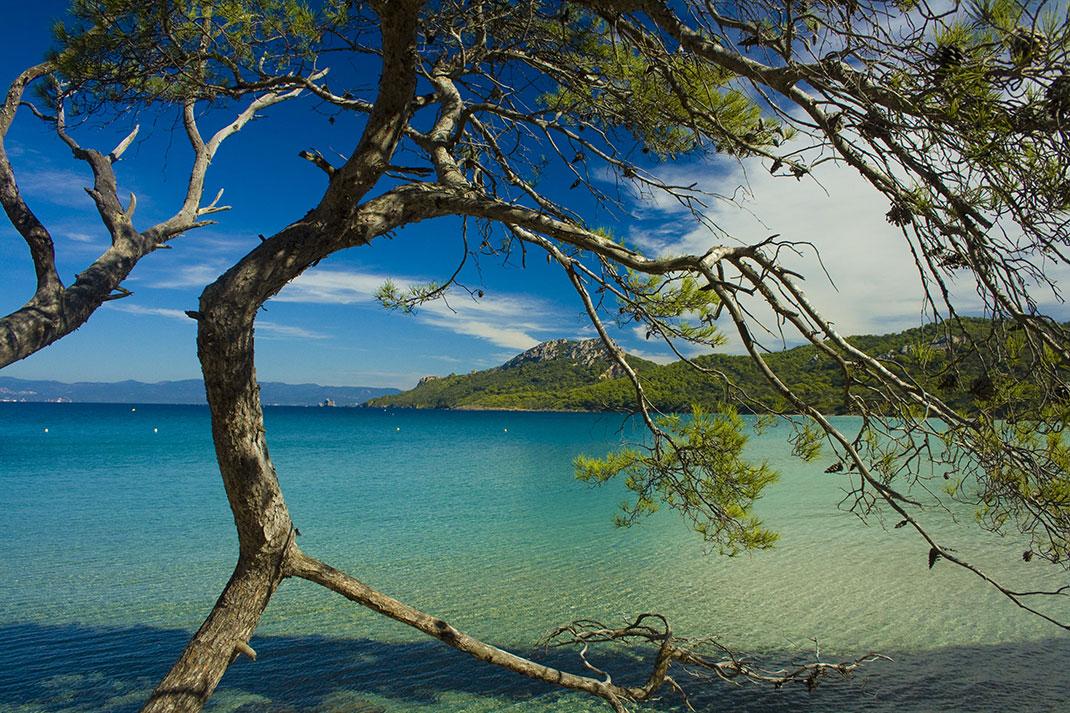 L'île de Porquerolles via Shutterstock