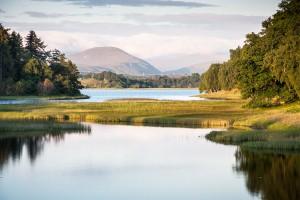 Le parc de Cairngorms en Ecosse via Shutterstock