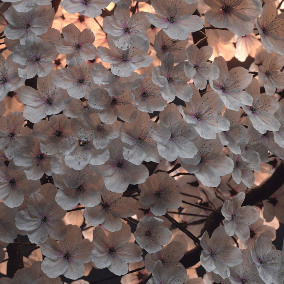 sculpture-fleurs-3