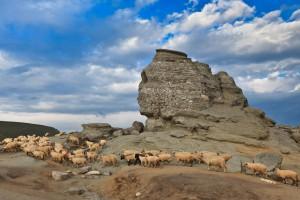 Le sphinx des Bucegi en plein après-midi via Shutterstock