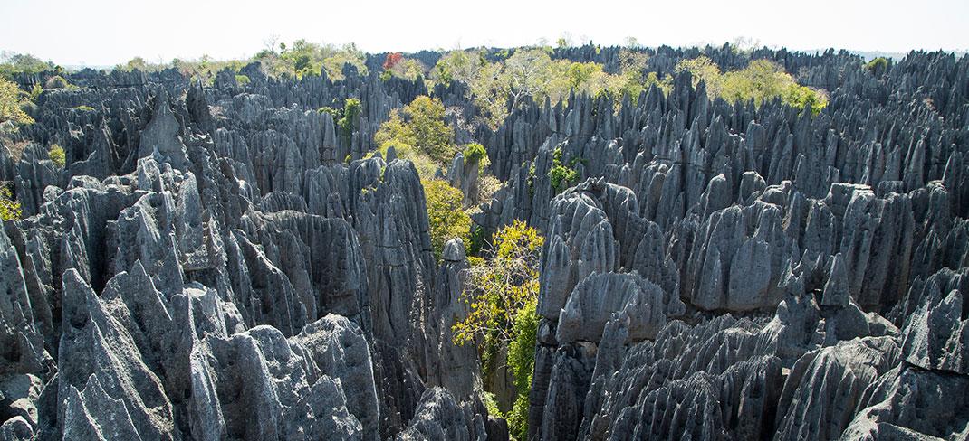 tsingy-bemaraha-reserve-10