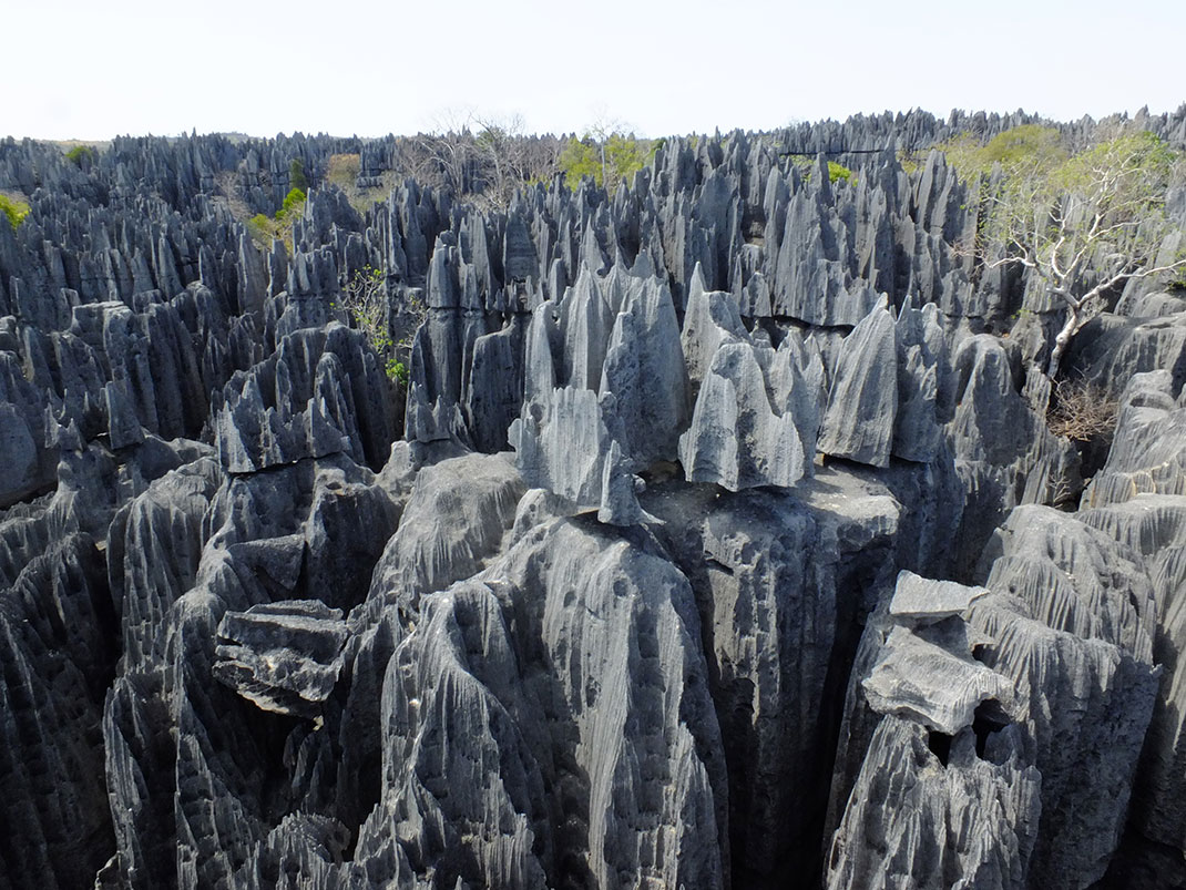 tsingy-bemaraha-reserve-4