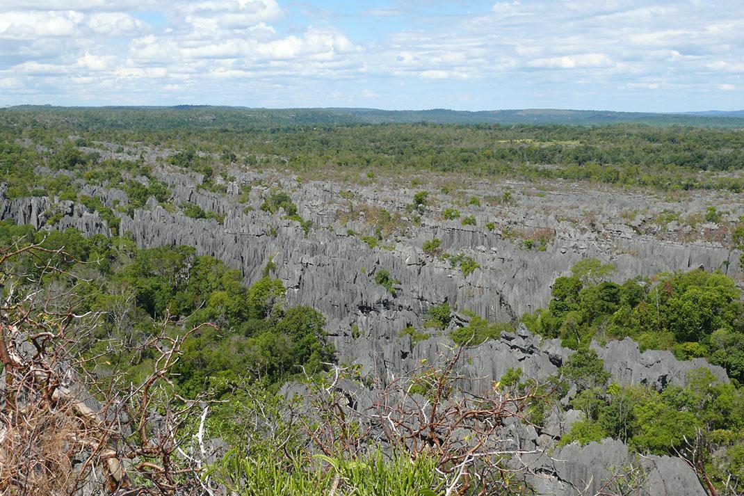 tsingy-bemaraha-reserve-8