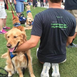 unite-chiens-reconfort-8