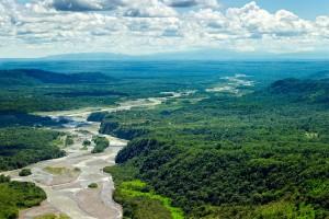 L'Amazone via Shutterstock