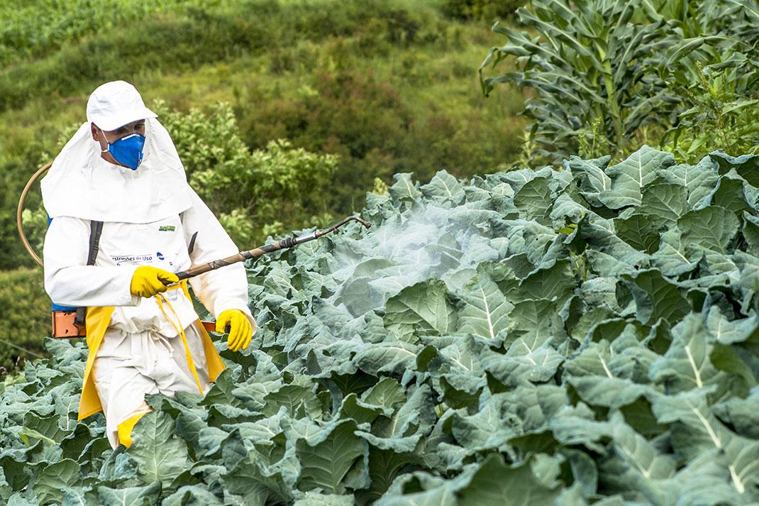 L'utilisation de pesticides via Shutterstock (Crédit photo: Alf Ribeiro)