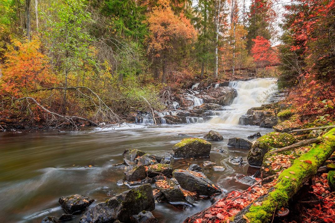 Un ruisseau via Shutterstock