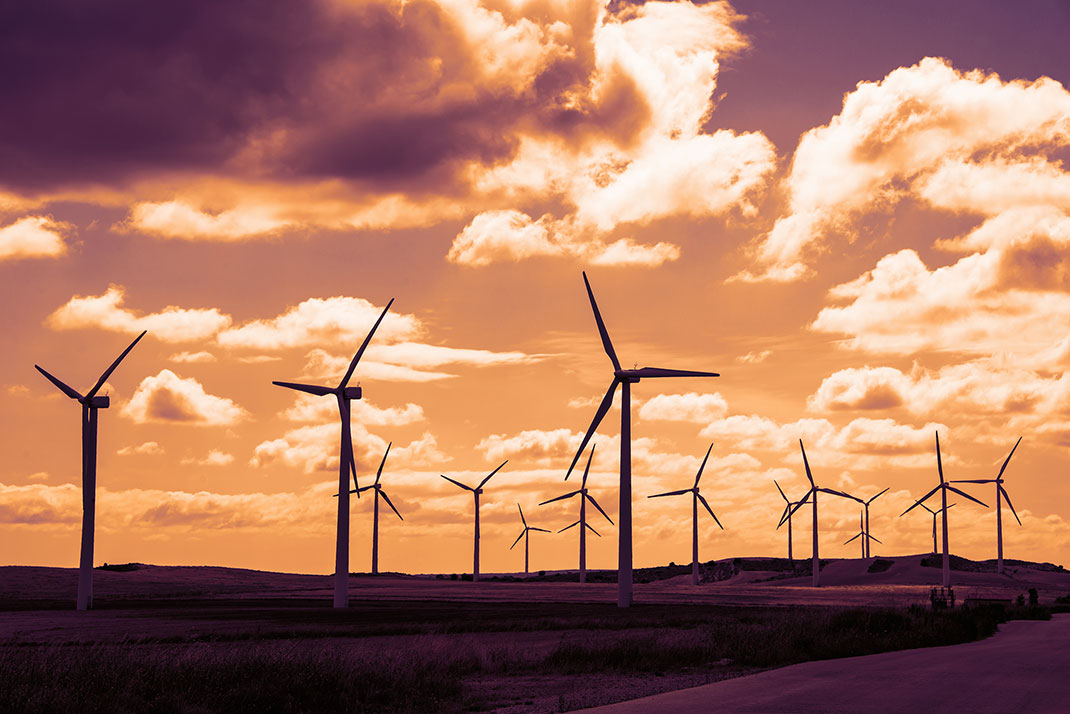Un champ d'éoliennes via Shutterstock