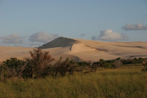 7-AFRIQUE-DUNE