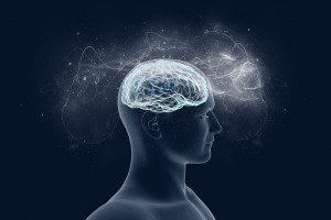 Vue d'artiste d'un cerveau humain via Shutterstock