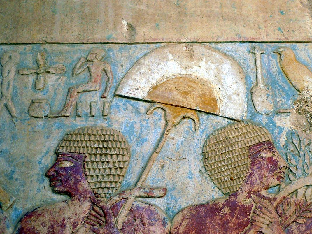 Illustration d'une expédition égyptienne au Pays de Pount - Temple d'Hatchepsout, Egypte