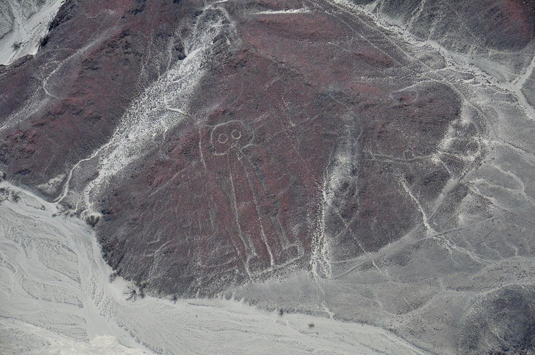 Nazca-4