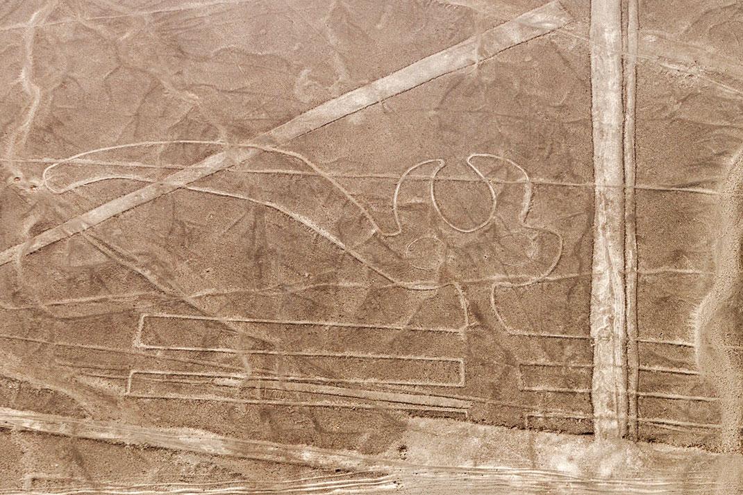 Le désert de Nazca via Shutterstock