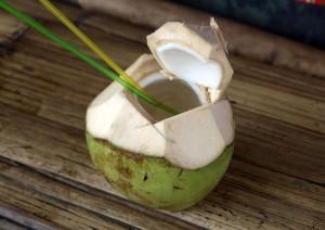 De l'eau de coco dans une noix de coco