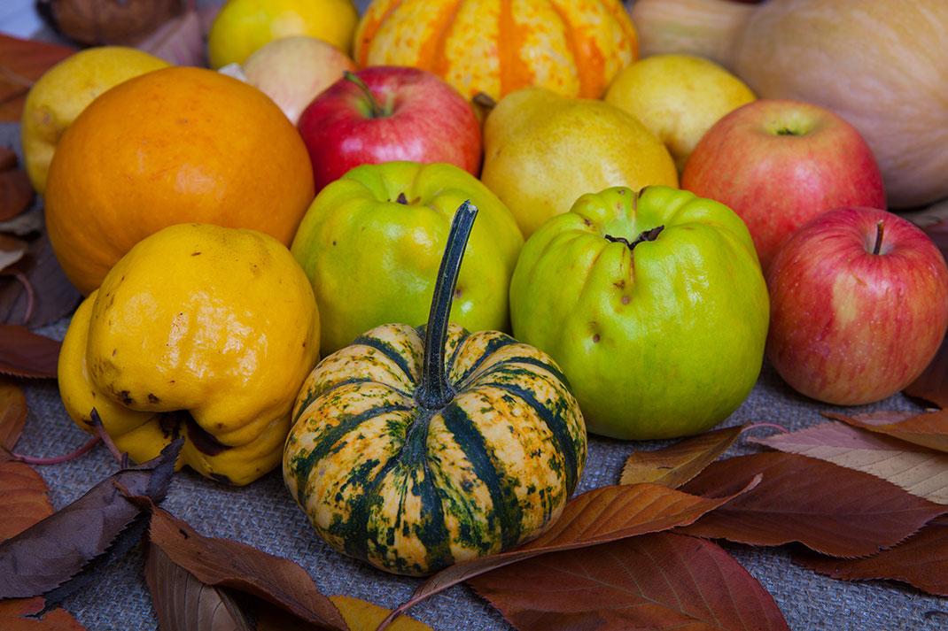 Fruits et légumes via Shutterstock