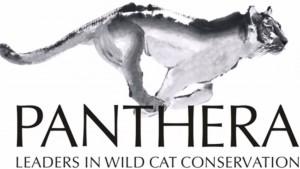 Logo de l'organisation Panthera