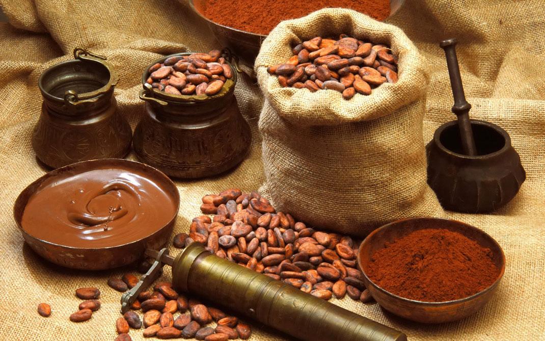 Du Cacao et du chocolat