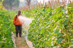 Pesticide via Shutterstock