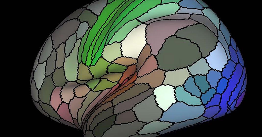 une-carte-cerveau