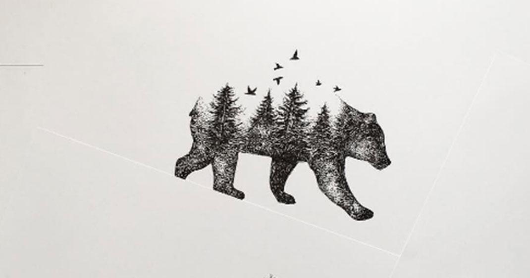 Alfred m le la faune et la flore dans des dessins qui - Dessin de grizzly ...