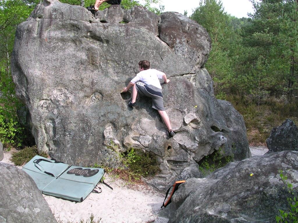 Fontainebleau-1