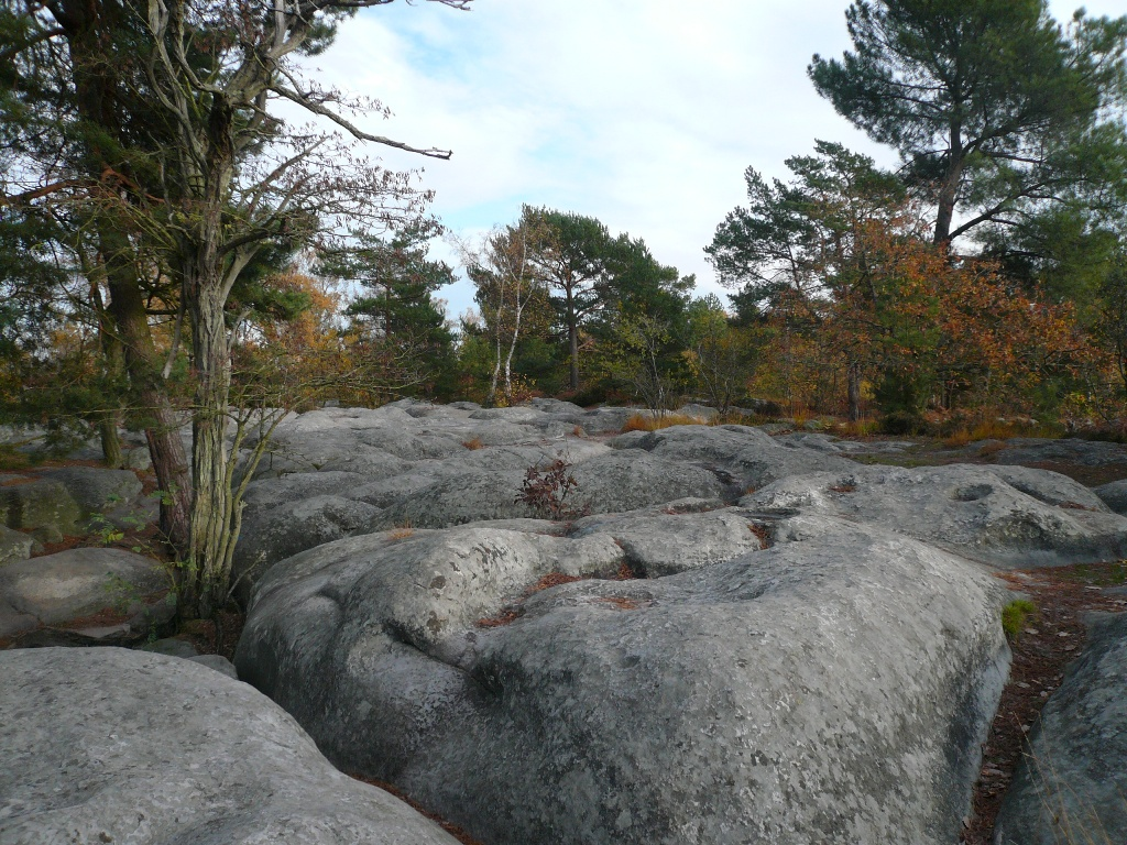 Fontainebleau-3
