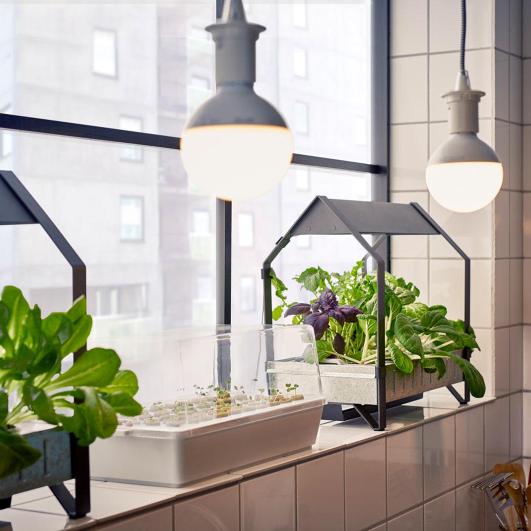 IKEA-hydroponie-1
