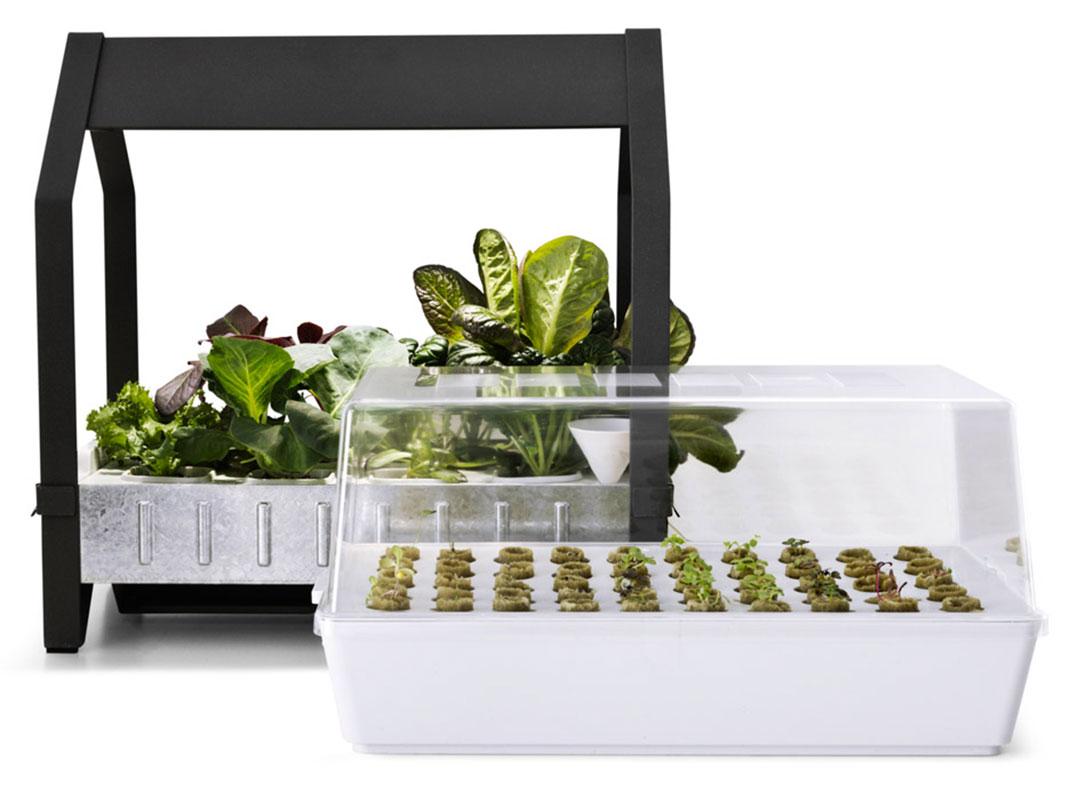 Cultivez facilement vos propres plantes en int rieur avec ces kits ikea dai - Ikea plante interieur ...