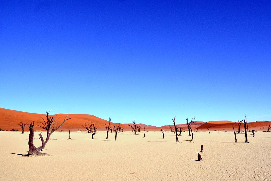 Sossusvlei-Namibie-12