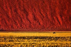Sossusvlei-Namibie-17