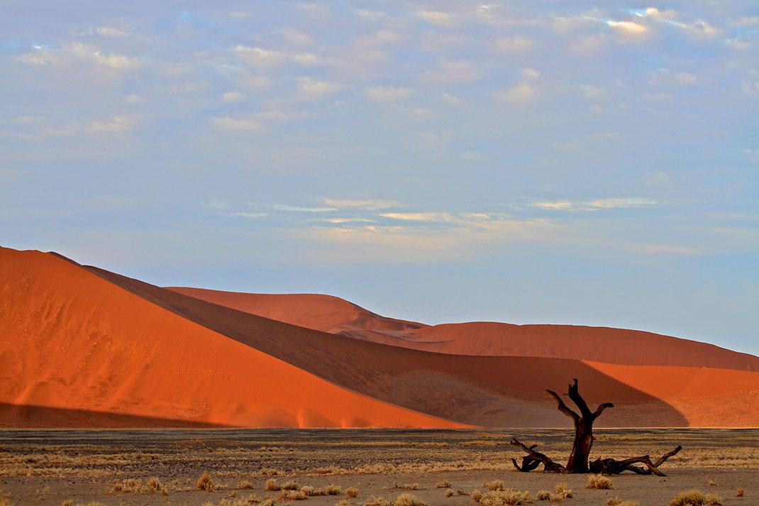 Sossusvlei-Namibie-8