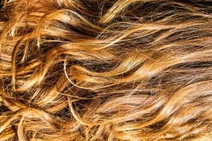 Des cheveux via Shutterstock