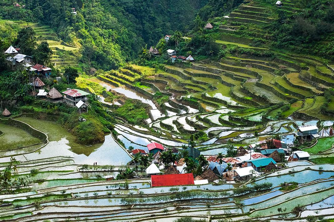 Des rizières à Banaue via Shutterstock