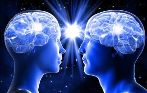 Cerveaux d'un homme et d'une femme via Shutterstock