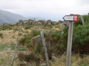 chemin-stevenson-cevennes-1