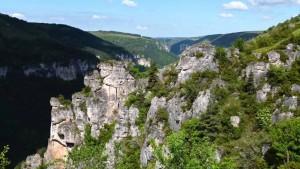 chemin-stevenson-cevennes-3
