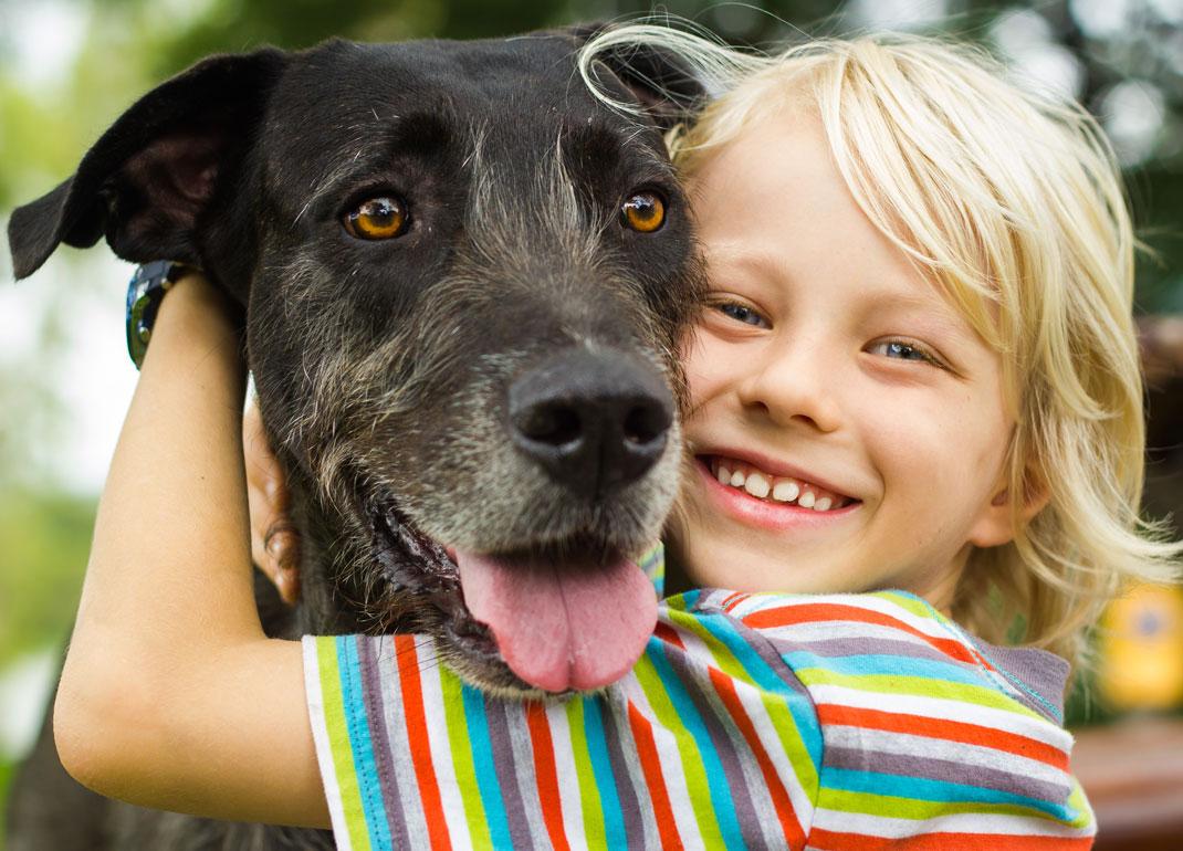 Un enfant enlace son chien via Shutterstock