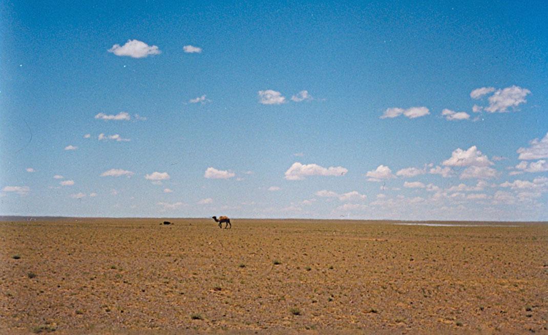 La province d'Ömnögovi dans le désert via Wikimédia by User:Doron