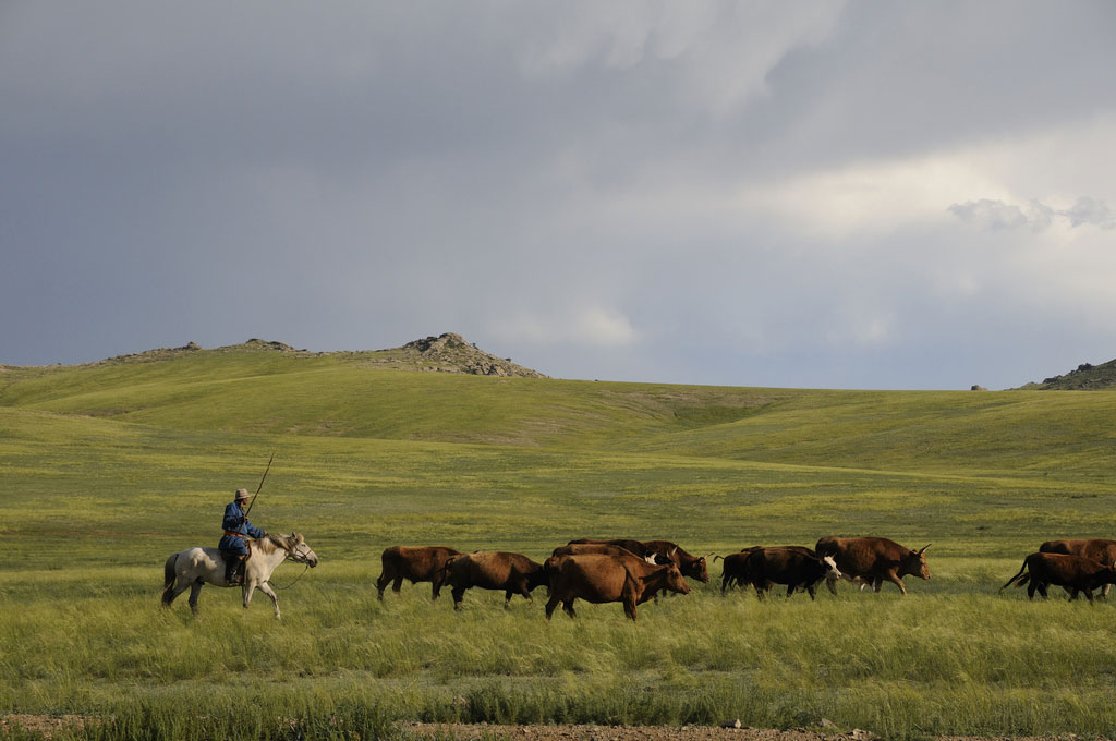 steppes-mongoles-mongolie-nature-6