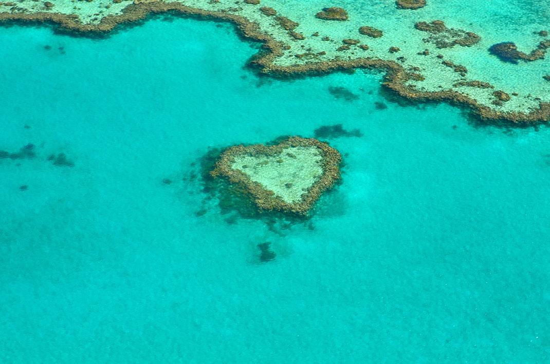 Un récif corallien de 6 000 km2 a été découvert sous la Grande Barrière de Corail
