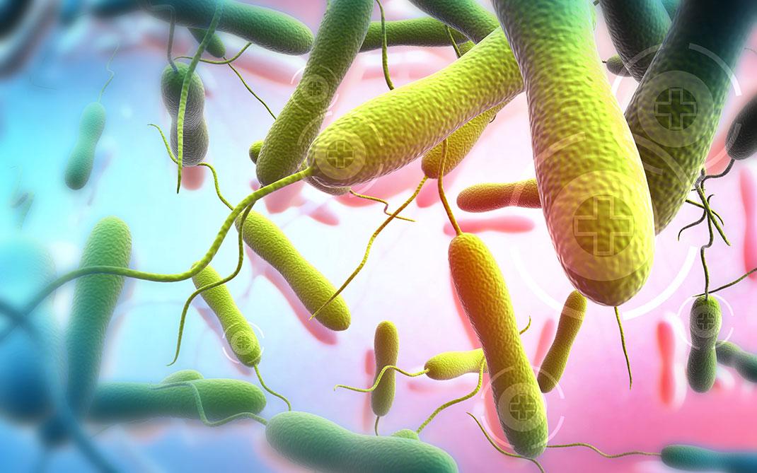 Le choléra se propage dangereusement dans les régions où l'hygiène manque