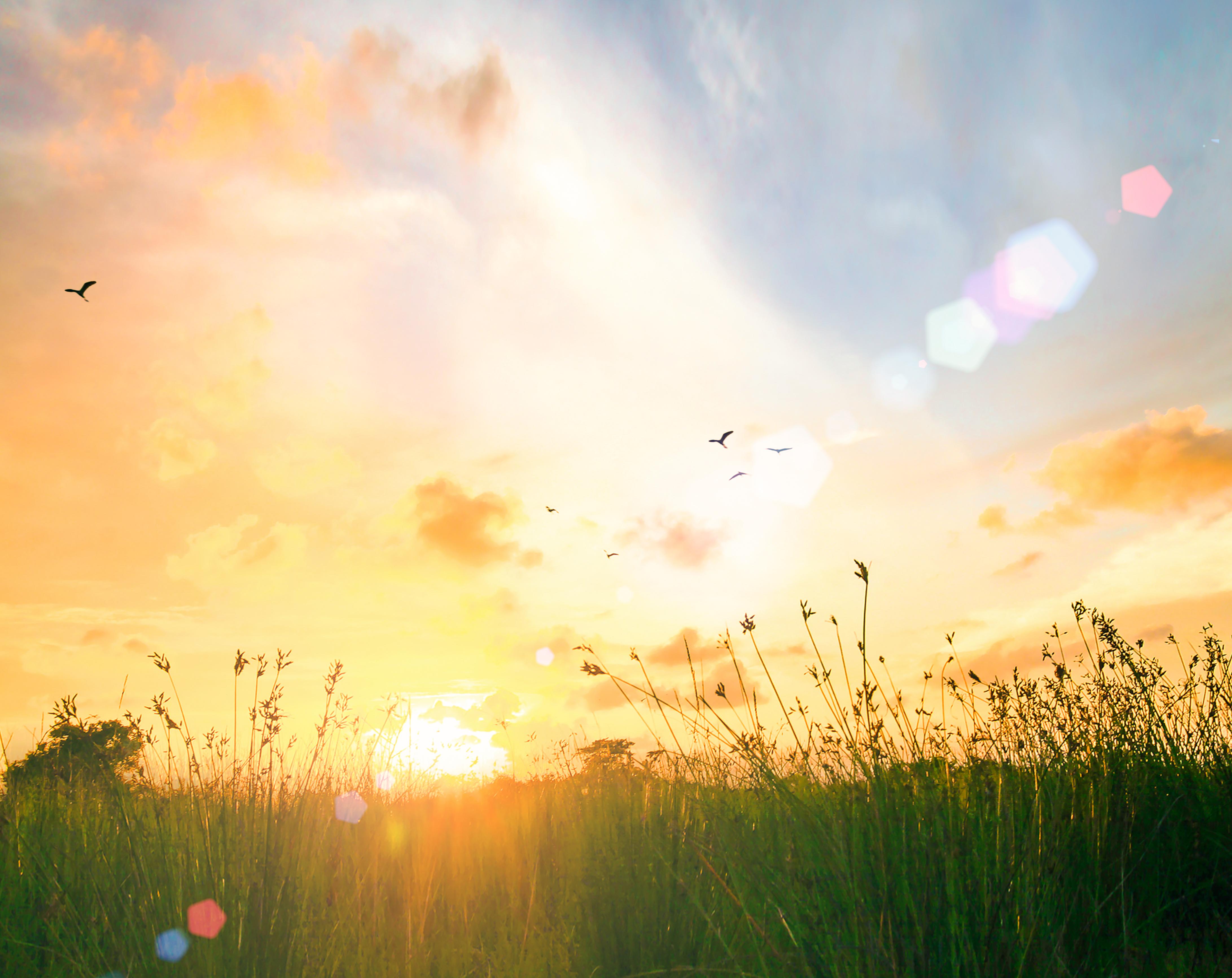 Le Danemark souhaite autant encourager les consommateurs que les producteurs et les distributeurs via Shutterstock