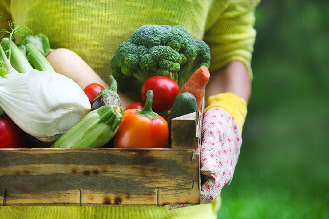 france-augmentation-alimentation-biologique-4