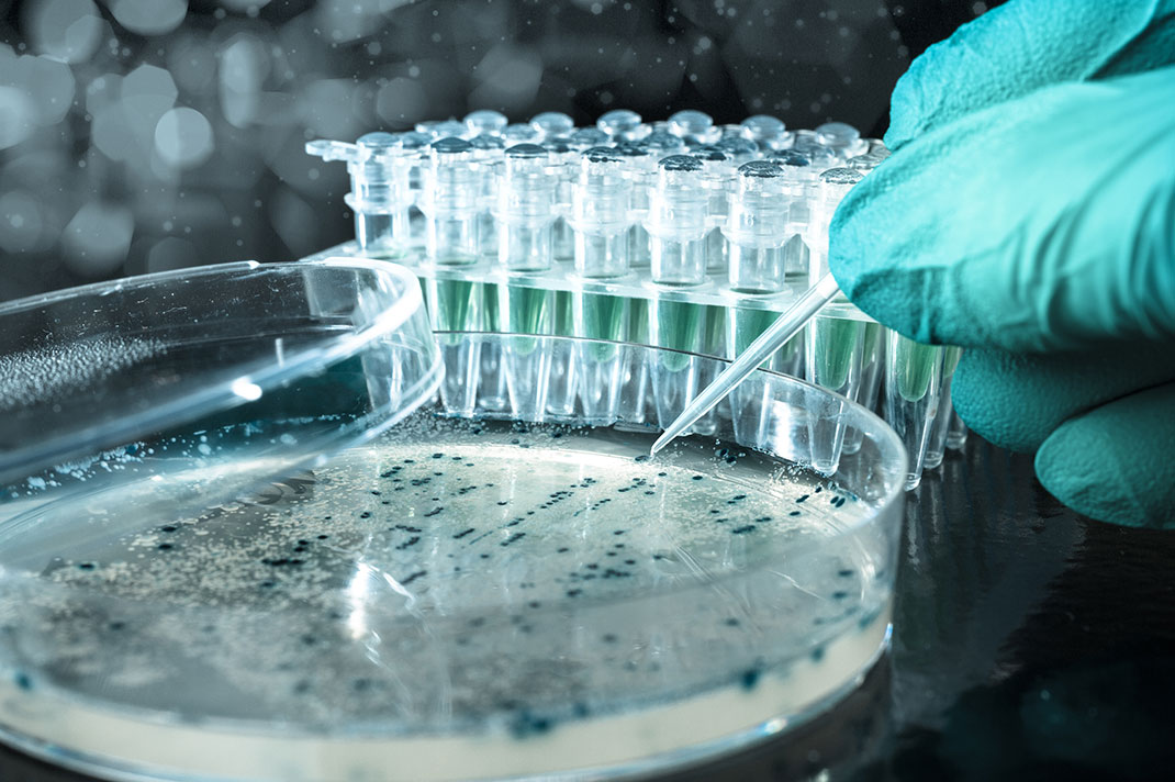 Manipulation génétique via Shutterstock