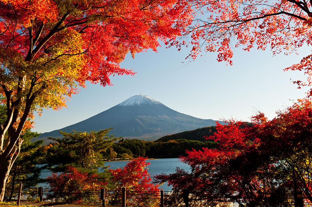 mont-fuji-automne