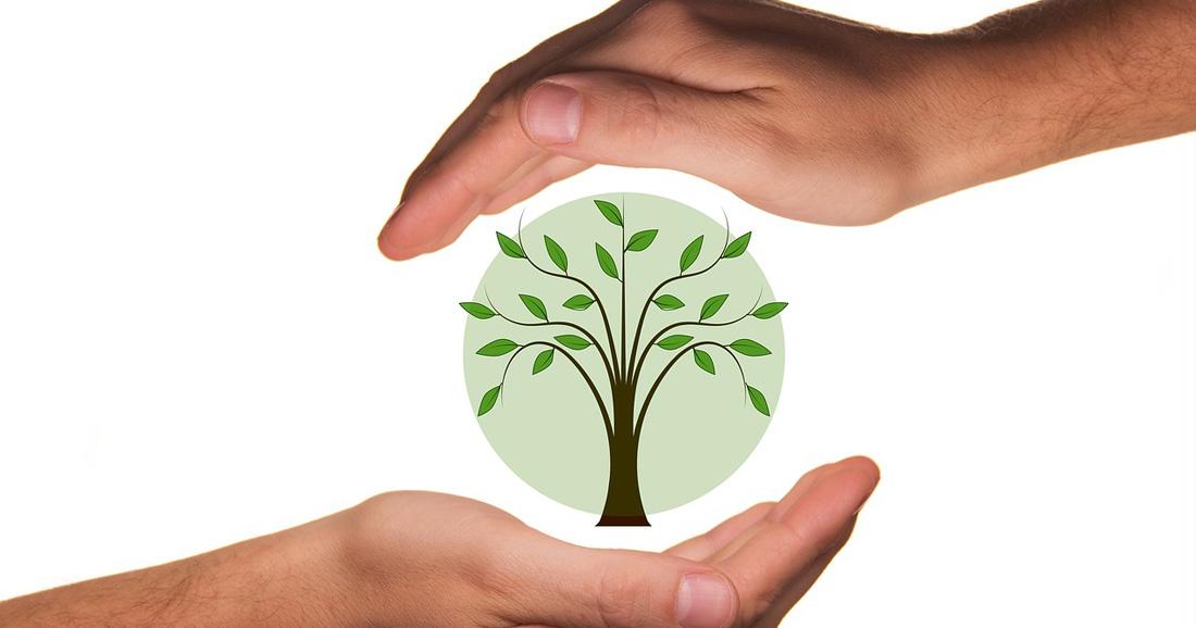 © Pixabay - Empreinte écologique