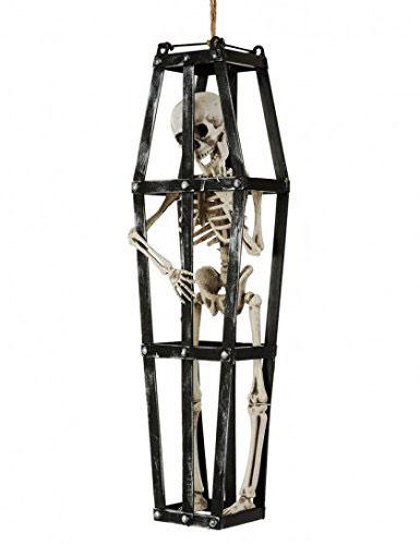 5-cage-squelette