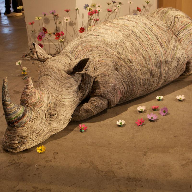 animaux-journal-rhino