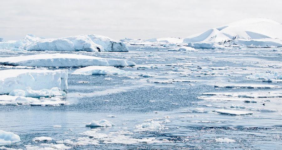 antarctique-sanctuaire-glace
