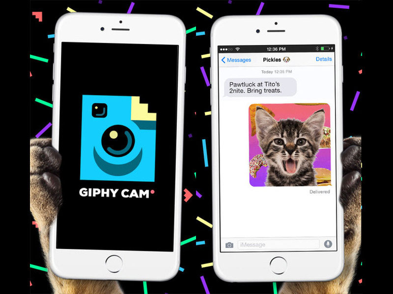 app-giphy-cam-1